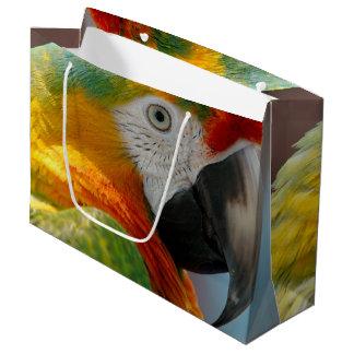 Beautiful Macaw Large Gift Bag