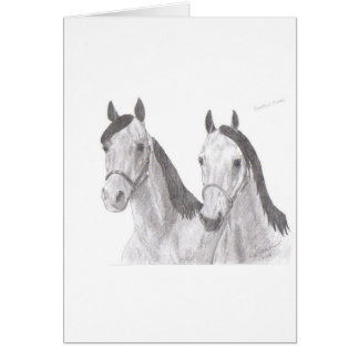 Beautiful Mares Horse Drawings Card