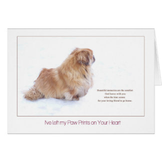 Beautiful Memories Pekingese dog sympathy Card
