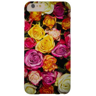 Beautiful Mixed Roses Bouquet Barely There iPhone 6 Plus Case