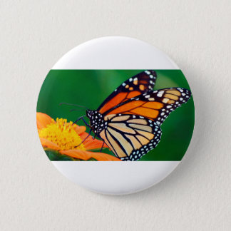 Beautiful Monarch Butterfly 6 Cm Round Badge