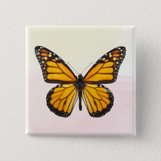 Beautiful Monarch Butterfly Orange Black 15 Cm Square Badge