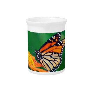 Beautiful Monarch Butterfly Pitcher