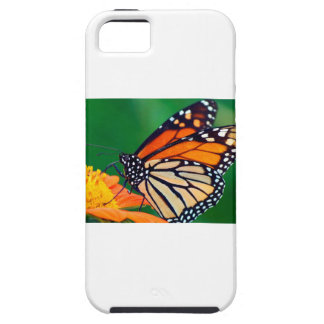Beautiful Monarch Butterfly Tough iPhone 5 Case