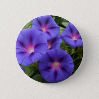Beautiful Morning Glories in Bloom 6 Cm Round Badge