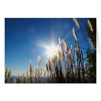 Beautiful Morning Grass Notecard