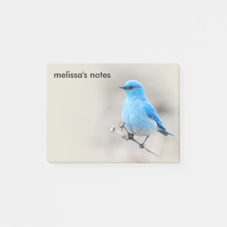 Beautiful Mountain Bluebird Post-it Notes