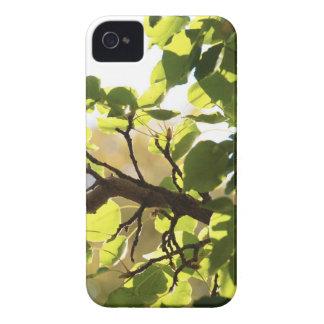 Beautiful Nature iPhone Case iPhone 4 Case-Mate Case