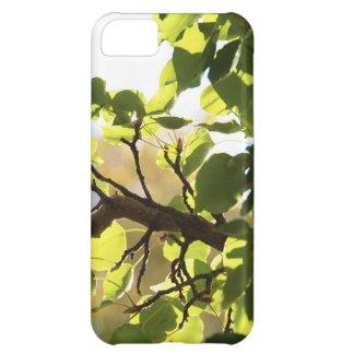 Beautiful Nature iPhone Case iPhone 5C Case