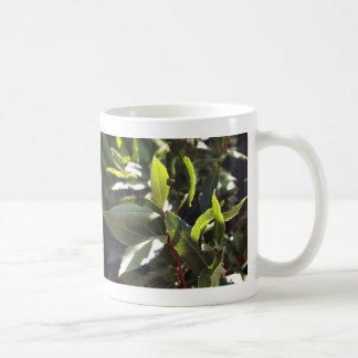 Beautiful Nature Mug