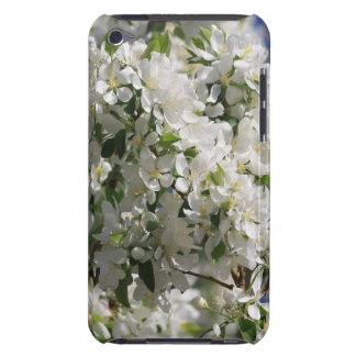 Beautiful Nature Photo Of White Apple Blossom iPod Touch Cover