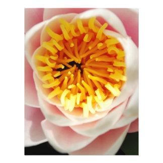 Beautiful nenufar plant flower flyer