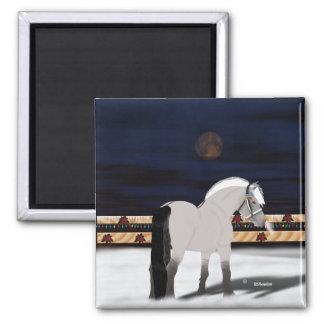 Beautiful Norwegian Fjord Horse Magnet