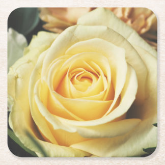 Beautiful Off White Cream Rose Square Paper Coaster
