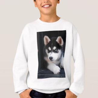 Beautiful One Blue Eye Siberian Husky 2 Sweatshirt