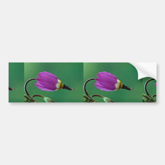 Beautiful One shooting star flower against green Bumper Stickers