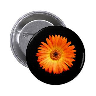 Beautiful Orange and Yellow Gerbera Daisy Buttons