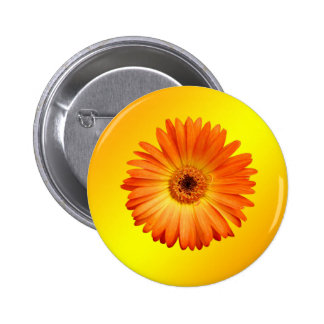 Beautiful Orange and Yellow Gerbera Daisy Button
