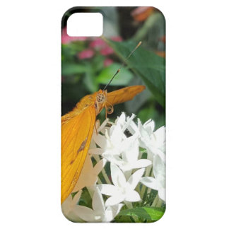 Beautiful Orange Butterflies on White Flowers iPhone 5 Cover