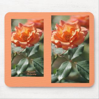 Beautiful orange cream rose mousepad