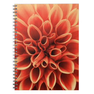 Beautiful Orange Dahlia Flower Spiral Notebooks
