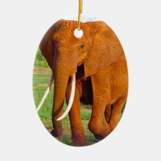 Beautiful Orange Elephant Ceramic Oval Decoration