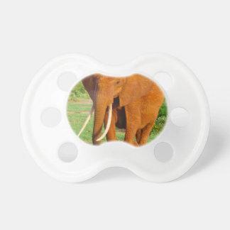 Beautiful Orange Elephant Dummy