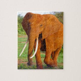 Beautiful Orange Elephant Jigsaw Puzzle