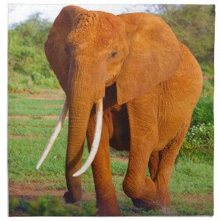 Beautiful Orange Elephant Napkin