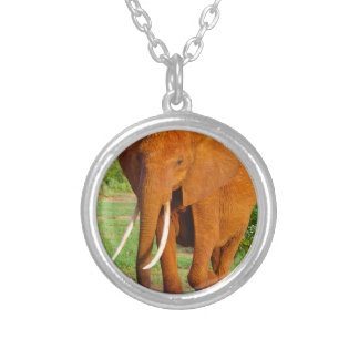 Beautiful Orange Elephant Silver Plated Necklace