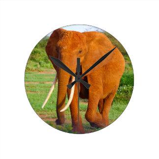Beautiful Orange Elephant Wall Clock