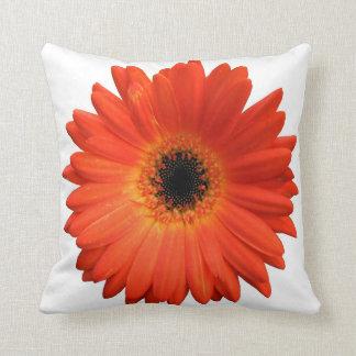 Beautiful Orange Gerbera Daisy Throw Pillows