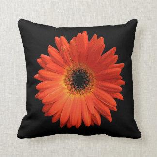 Beautiful Orange Gerbera Daisy Cushions