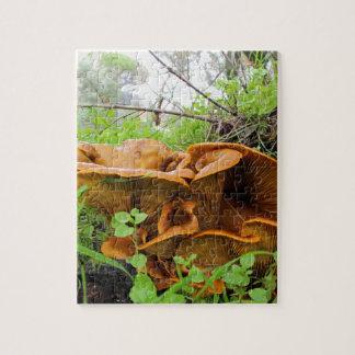 Beautiful Orange Mushroom Puzzle