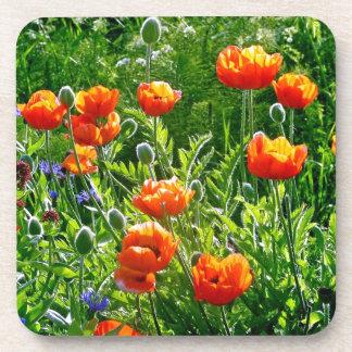 Beautiful orange poppy flower print coaster