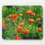 Beautiful orange poppy flower print mouse pad
