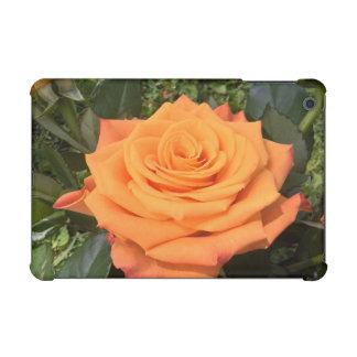Beautiful orange rose photo iPad case