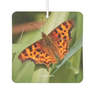 Beautiful Orange Satyr Comma Butterfly Car Air Freshener