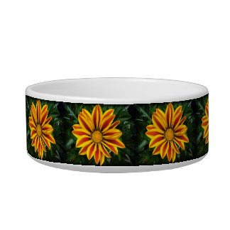 Beautiful Orange Sun Flower Photo Bowl