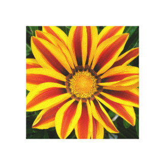 Beautiful Orange Sun Flower Photo Canvas Print