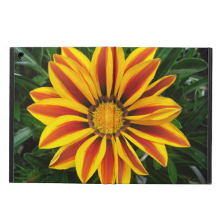 Beautiful Orange Sun Flower Photo Cover For iPad Air