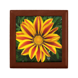 Beautiful Orange Sun Flower Photo Gift Box