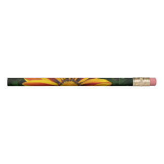 Beautiful Orange Sun Flower Photo Pencil