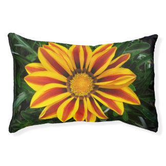 Beautiful Orange Sun Flower Photo Pet Bed