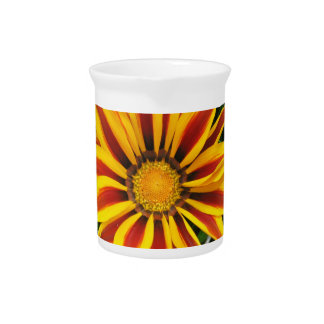 Beautiful Orange Sun Flower Photo Pitcher