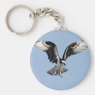 Beautiful Osprey bird Searching for prey Key Ring