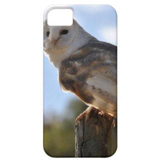 Beautiful Owl iPhone 5 Cover