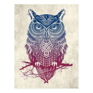 Beautiful Owl Postcard