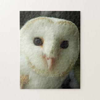 Beautiful Owls Face Puzzle/Jigsaw Jigsaw Puzzle