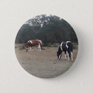 Beautiful Paint Horses 6 Cm Round Badge